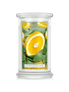 Kringle Candle® Citrus And Sage 2-Docht-Kerze 623g