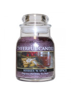 Cheerful Candle Berries 'N Spice 1-Docht-Kerze 170g