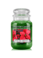 Country Candle™ Home For Christmas 2-Docht-Kerze 652g