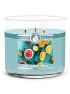 Goose Creek Candle® Optimistic Vibes 3-Docht-Kerze 411g