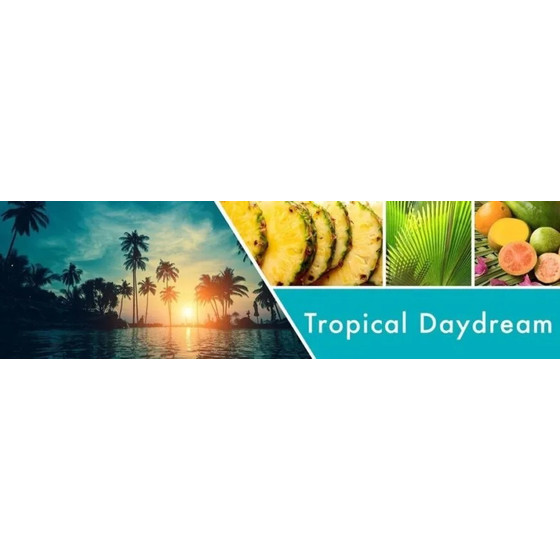 Goose Creek Candle® Tropical Daydream flüssige Schaum-Handseife 270ml